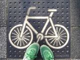 Bike Survey Recap — ThankYou!